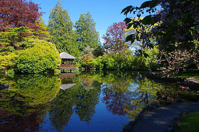 Photograph - Japanese Garden Pond - View 2 by Marilyn Wilson