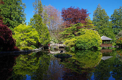 Photograph - Japanese Garden Pond - View 3 by Marilyn Wilson