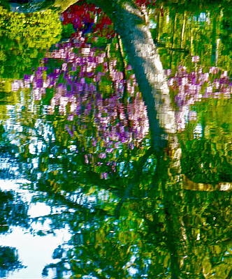Photograph - Japanese Garden Reflection by Jean Wright
