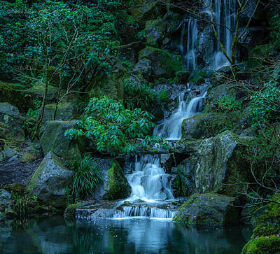 Photograph - Japanese Garden Serenity 1 by Cassius Johnson
