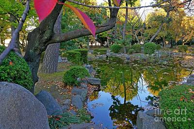 Apan Photograph - Japanese Garden Water Reflections-2 by Sergey Reznichenko