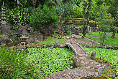 Photograph - Japanese Garden With Water Feature by John Orsbun