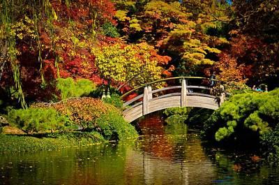 Photograph - Japanese Gardens 9540 by Ricardo J Ruiz de Porras