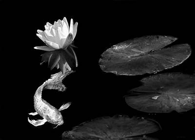 Photograph - Japanese Koi Fish And Water Lily Flower Black And White by Jennie Marie Schell