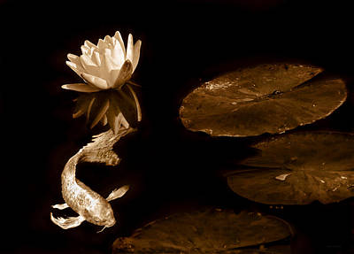 Photograph - Japanese Koi Fish And Water Lily Flower Sepia by Jennie Marie Schell