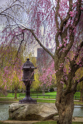 Photograph - Japanese Lantern - Boston Public Garden by Joann Vitali