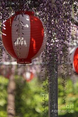 Japanese Lantern With Wisteria Original