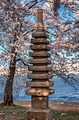 Photograph - Japanese Pagoda by Mary Almond