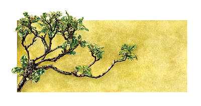 Painting - Japanese Pittosporum At The Hakone Gardens by Suzannah Alexander