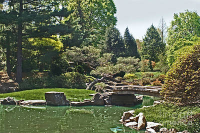 Photograph - Japanese Tea Garden by Dawn Gari