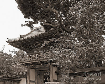 Photograph - Japanese Tea Garden Pagoda In Sepia. Golden Gate Park by Connie Fox