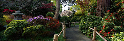 Flower Blooms Photograph - Japanese Tea Garden, San Francisco by Panoramic Images