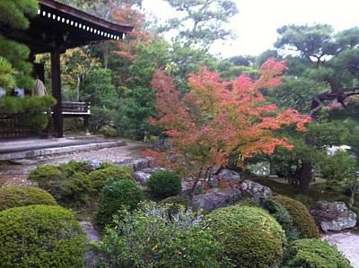Japanese Temple Peace Art Print