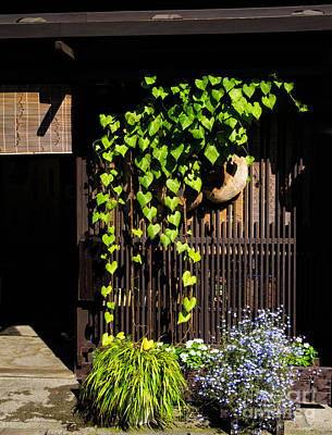 Photograph - Japanese Wall - Wooden Lattice And Green Creepers by Chie Shimado
