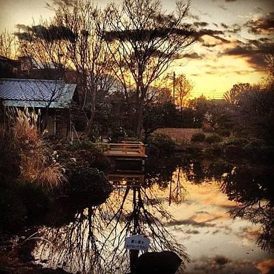 Finch Wall Art - Photograph - Japn Garden#garden #instagram #iphone4s by Saito Hironobu