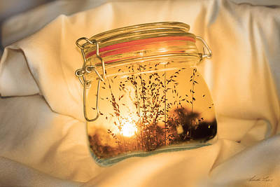 Photograph - Jar Full Of Sunshine by Linda Lees