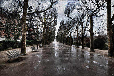 Paris Skyline Royalty-Free and Rights-Managed Images - Jardin Des Plantes Paris France by Evie Carrier