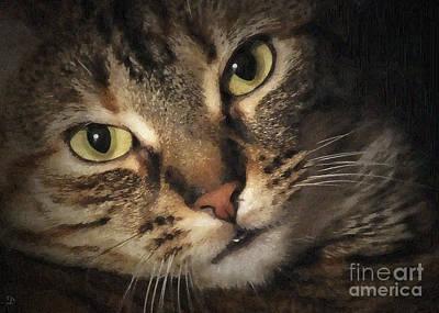 Photograph - Jasmine by Debi Dmytryshyn