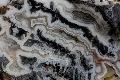 Darrell Gulin Photograph - Jasper Agate Mixed Slab by Darrell Gulin