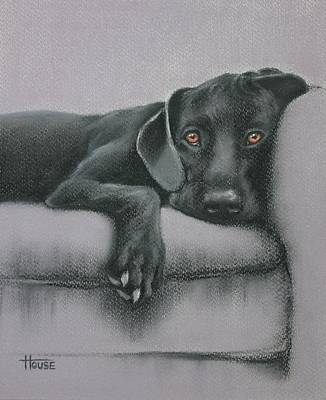 Jasper Art Print by Cynthia House