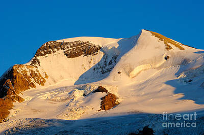 Photograph - Jasper - Mount Athabasca Evening Light by Terry Elniski