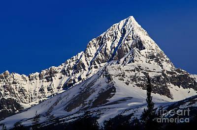 Canadian Rockies Photograph - Jasper - Mount Edith Cavell by Terry Elniski