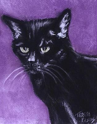 Portraits Of Pets Mixed Media - Jasper by Teresa Pascos