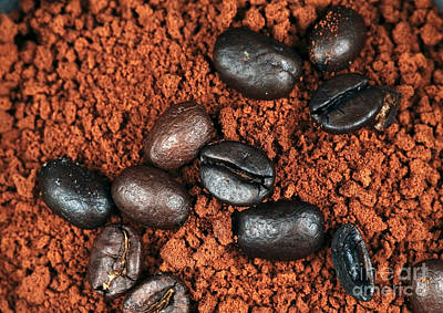 Photograph - Java Grinds by John Rizzuto
