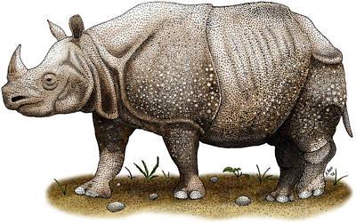Javan Rhinoceros Art Print by Roger Hall