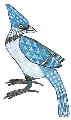 Bluejay Drawing - Jay by Brian Fuchs