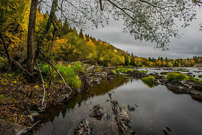 Cooke Photograph - Jay Cooke State Park by Paul Freidlund