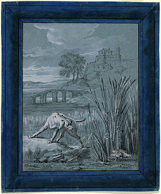 Wash Drawing - Jean-baptiste Oudry, The Partridge Saves Her Young, French by Quint Lox