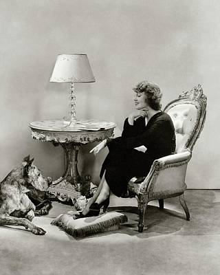 Great Dane Photograph - Jeanette Macdonald With A Great Dane Dog by Lusha Nelson
