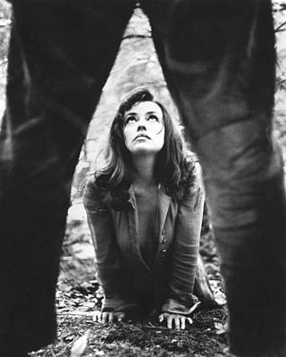 Moreau Photograph - Jeanne Moreau In Mademoiselle  by Silver Screen