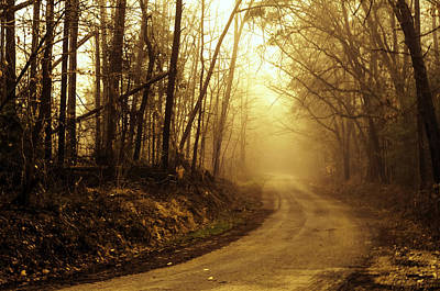 Photograph - Jefferson Landing Road by Laura DAddona