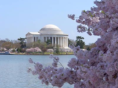Flower Memorial Photograph - Jefferson Memorial - Cherry Blossoms by Mike McGlothlen