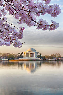 Photograph - Jefferson Memorial In The Early Morning by Leah Palmer