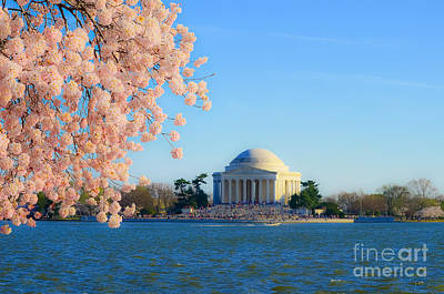 Photograph - Jefferson Memorial On The Basin With Blooms by Jeff at JSJ Photography