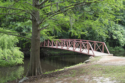 Photograph - Jeffries Creek Foot Bridge by MM Anderson