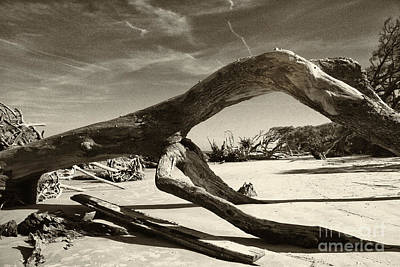Jekyll Island Monster Art Print