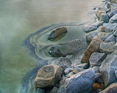 Jekyll Photograph - Jekyll Island Tidal Pool by Betsy Knapp