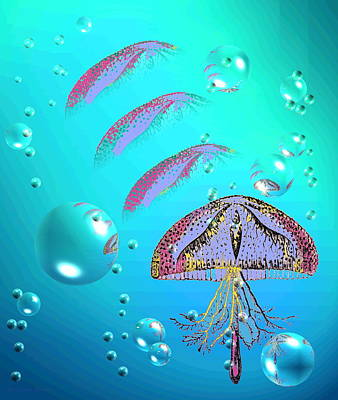 Photograph - Jellyfish A1a by Joyce Dickens