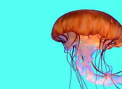 Jellyfish Art Print by Tanias Reign