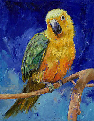 Jenday Conure Art Print by Michael Creese