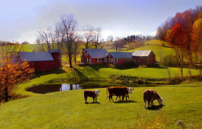 Photograph - Jenne Farm In Autumn by Nancy Griswold