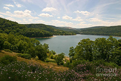 Photograph - Jennings Randolph Lake by Jeannette Hunt