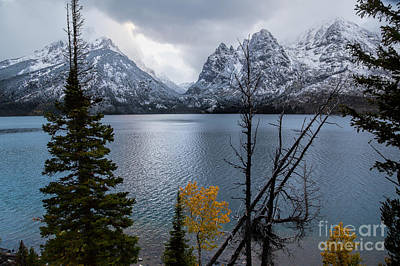 Photograph - Jenny Lake by Jim Garrison