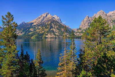 Photograph - Jenny Lake Overlook by Greg Norrell