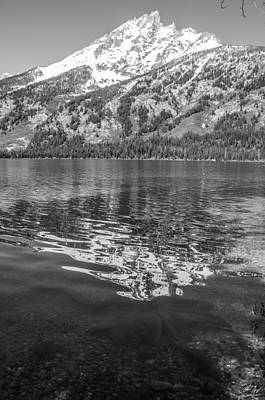 Photograph - Jenny Lake Reflection by Aaron Spong