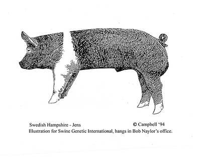 Swedish Hampshire Art Print